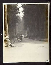 USA RED CROSS MISSION TO RUSSIA NIKKO JAPAN 1917 PHOTOf