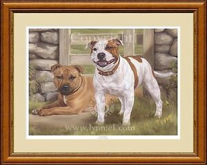 STAFFORDSHIRE BULL TERRIERS limited edition print 'Lazy Days'