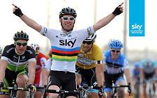 MARK CAVENDISH 2011 WORLD CHAMPION TEAM SKY PRO CYCLING POSTER