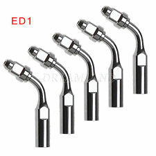5x Dental 120° ED1 Endo Tips Inserts For Satelec DTE Ultrasonic Scaler Handpiece