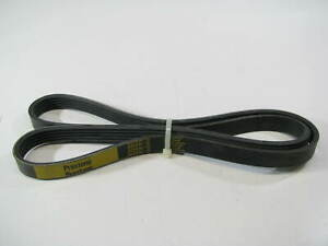 "Prestone 505K5 Serpentine Belt - 0.69"" X 50.50"" - 5 Ribs"