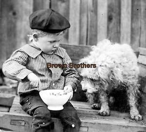 1910 Charming Image Boy Feeds Terrier in Wheelbarrow Glass Photo Camera Negative