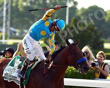 AMERICAN PHAROAH 2015 BELMONT STAKES TRIPLE CROWN WINNER HORSE 8X10 PHOTO
