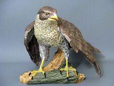 AK Kaiser Vogel Figur Habicht Adler Falke Gawantka Figure Figurine um 1972