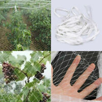 White Anti Bird Net Poultry Farm Netting Orchard Crop Plant Fruit Protect Mesh