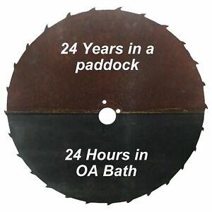 OA Bath Removes Dissolves Rust Oxalic Acid Corrosion Oxidation Restoration Clean