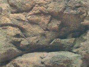 "19"" TALL Rock Waterproof Aquarium / Vivarium Background Poster Picture"