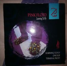 Vinyle rose 45 tours Single SP PINK FLOYD Learning To Fly '88 Pink Wax UK issue