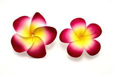 Haarblume Hawaiblüte Hibiskus Lotusblüte Haarblüte Blumenclip Rose 2Stck.1Preis
