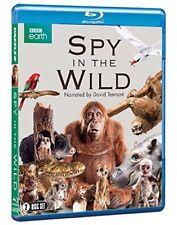 SPY IN THE WILD (2017): BBC Nature Documentary TV Season Series - NEW BLU-RAY UK