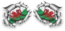 Small Pair STD RIP Ripped Torn Metal Welsh Dragon Wales CYMRU Flag car sticker