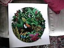 "Chick Bragg, ""Rainforest Magic"" LE SN COA Nature Tucan"
