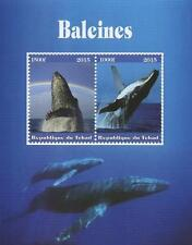 WHALES SEA MAMMAL ANIMAL REPUBLIQUE DU TCHAD 2015 MNH STAMP SHEETLET