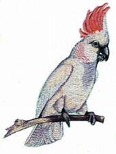 Embroidered Fleece Jacket - Cockatoo BT2877