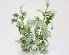Set of 2 Artificial Chrysanthemum Leaf Stems - 57cm - Green Leaves & Foliage