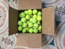 50 Used Tennis Balls Free Usps Priority Shipping Kids Classroom Dogs 8K+Sold