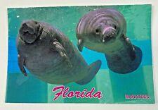 Vintage Postcard Florida Manatees Endangered Species Miami Seaquarium Lot Of 30