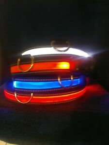 Led Dog Safety Collars Multiple Sizes and Colors Waterproof &Rechargeable.