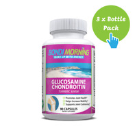 Glucosamine Chondroitin, Mobility Support Supplement with Turmeric - 90 Caps x 3