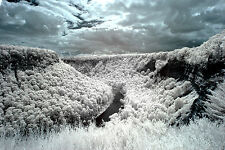 Fujifilm Fuji X-T1 720nm Standard IR  Infrared converted camera