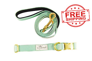 Solid Green Dog Walking Collar and Leash Set Gold Hardware Small Medium Large