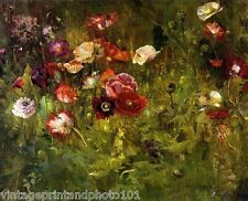 A Bed Of Poppies by Maria Oakey Dewing 8x10 Print Flower Nature Garden Art  0014