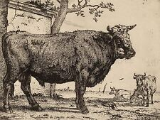 PAULUS POTTER DUTCH BULL OLD ART PAINTING POSTER PRINT BB6268A