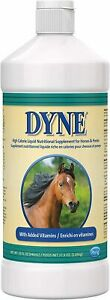 PetAg Dyne High Calorie Syrup for Horses 32 oz.