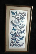 """Donna Richardson Signed Art Limited Edition Butterfly Collection 30 x 16"""" Framed"""