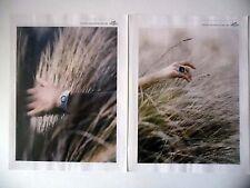 PUBLICITE-ADVERTISING :  HERMES Grandeur Nature (04) [2pages] 2016 Montres,Bague