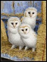 Barn Owl Chicks - Chart Counted Cross Stitch Pattern Needlework DIY DMC Color
