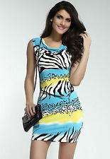 Novelty Zebra Stone Casual Dress with Waist belt Light Blue