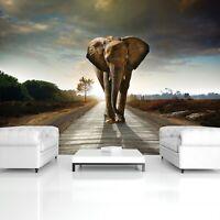 Vlies Fototapete Elefant Landschaft Tiere Natur Wohnzimmer Wandtapete Tapete XXL
