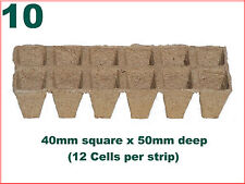 40mm Square Jiffy Garden Plant Pot (12 per strip) x TEN