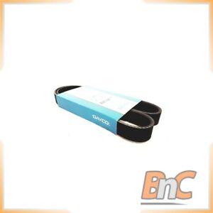 V-Ribbed Belts OEM 60625590 60571125 Genuine Heavy Duty Dayco