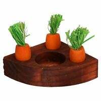 Small Animals Hamster Activity Toys Carrot Toy 'n' Treat Holder