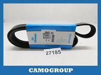 Belt Poly-V-Ribbed Belt Dayco 1558,0MM PEUGEOT 206 Citroen Xsara Picasso
