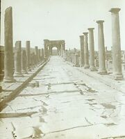 Algeria Timgad Ruines Romana c1900, Foto Stereo Placca Lente VR9L3n2