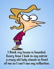 METAL REFRIGERATOR MAGNET House Haunted Crazy Woman Mirror Friend Family Humor