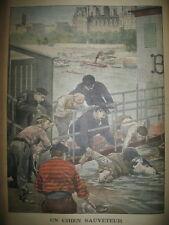 CHIEN TERRE-NEUVE PLONGEUR SAUVETEUR EN SEINEAGENT FLUVIAL LE PETIT JOURNAL 1902