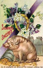"""PIG,France,Greetings,""""Souhaits Sinceres"""",Horsehoe,Good Luck,Used,1906"""