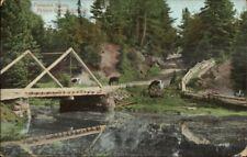 Prince Edward Island Pastoral Scene c1910 Postcard rpx