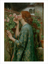 Waterhouse - The Soul of the Rose - fine art print poster wall art various sizes