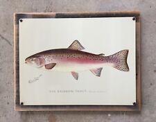 S.F Denton Rainbow Trout Fish Fishing Vintage Framed Print On Steel New York
