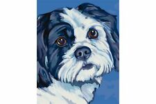 PAINTING BY NUMBERS SHIH TZU T16130077