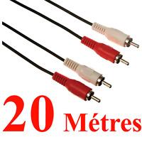 Câble 2 RCA  Mâle vers 2 RCA Mâle  Fiches Surmoulées Repérées Longueur 20 Métres
