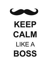 2017-2018 financial year diary 'Keep calm like a boss' A5
