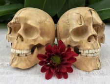 2 Hand Carved Sculpture Pair Set of 2 Human Skull Realistic Decoration Small