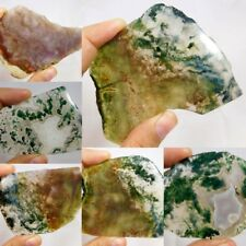 100% Natural Moss Agate Slice Mineral Specimen L74-130 Free Shipping