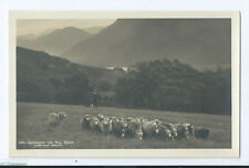 Post-War (1945 Present) Real Photographic (rp) Collectable British Postcards